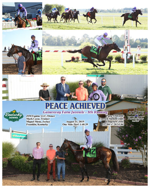 PEACE ACHIEVED - Gainesway Farm Juvenile - 8th Running - 08-31-19 - R10 - KD