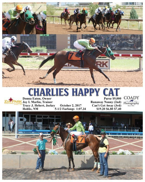 CHARLIES HAPPY CAT - 100217 - Race 04 - ZIA