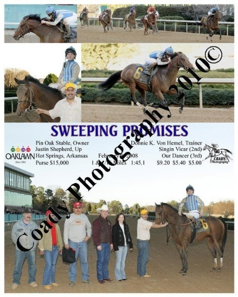 SWEEPING PROMISES  -    -  2 8 2008