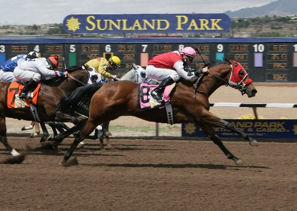 Gbh Steppin Johnny - New Mexican Spring Futurity