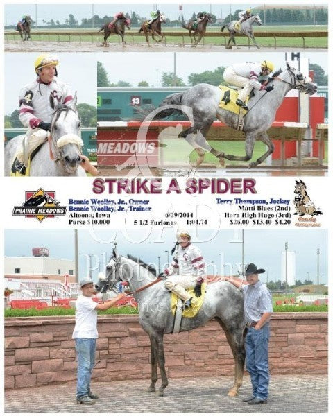 Strike A Spider - 6/29/2014 - Race 2 - PRM