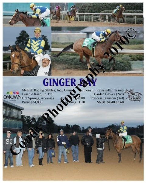 GINGER BAY  -  The Spring Fever Stakes  20th Runni