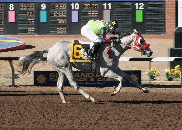 Explosive Mine - Copper Top Futurity