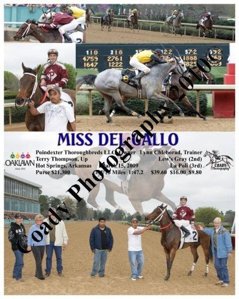 MISS DEL GALLO  -    -  3 15 2009