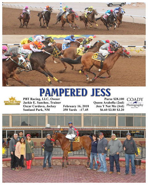 PAMPERED JESS - 021618 - Race 8 - SUN