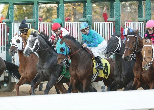 OLD FASHIONED -The Southwest Stakes - Start Tight