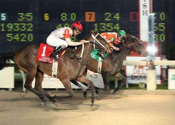 SUPERIOR STORM - PREMIER NIGHT DISTAFF
