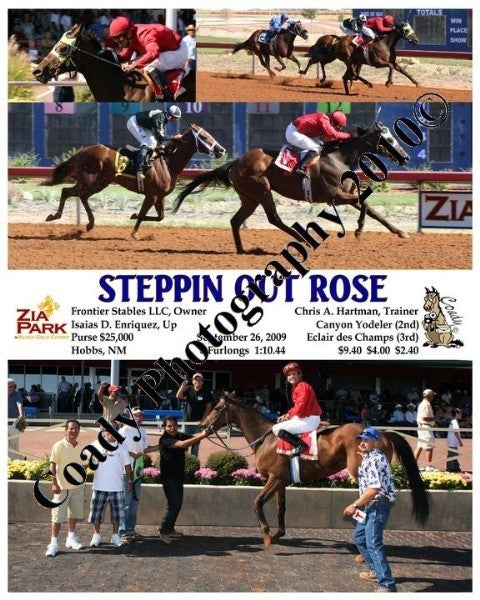 STEPPIN OUT ROSE  -    -  9 26 2009