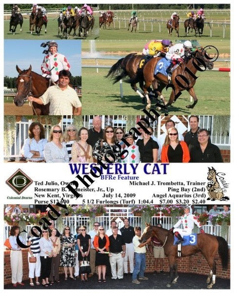 WESTERLY CAT  -  BFRe Feature  -  7 14 2009