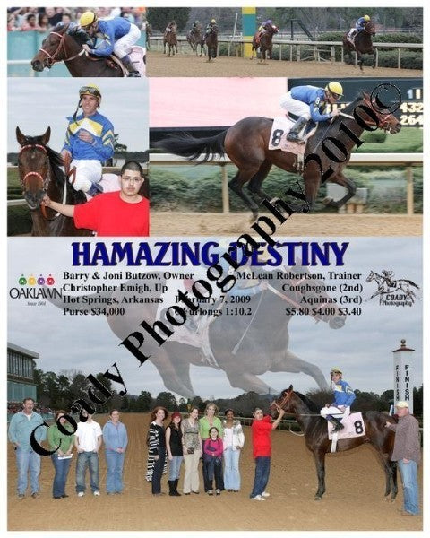 Hamazing Destiny  -    -  2 7 2009
