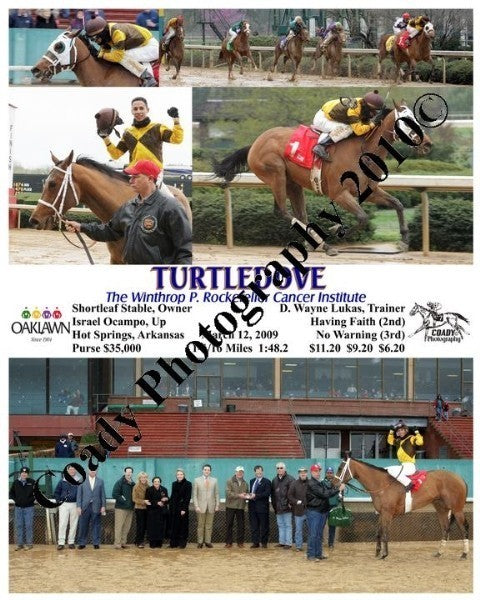 TURTLEDOVE  -  The Winthrop P. Rockefeller Cancer