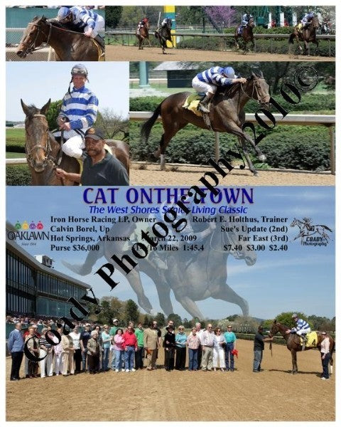CAT ONTHE TOWN  -  The West Shores Senior Living C