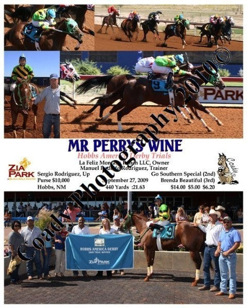 MR PERRYS WINE  -  Hobbs America Derby Trials  -