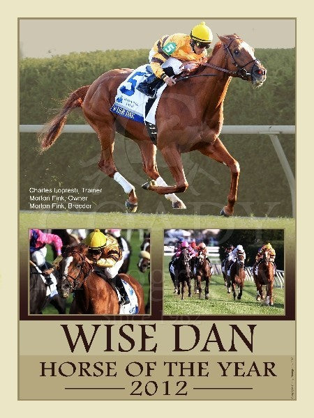 2012 Horse of the Year - Wise Dan - 18x24 Print