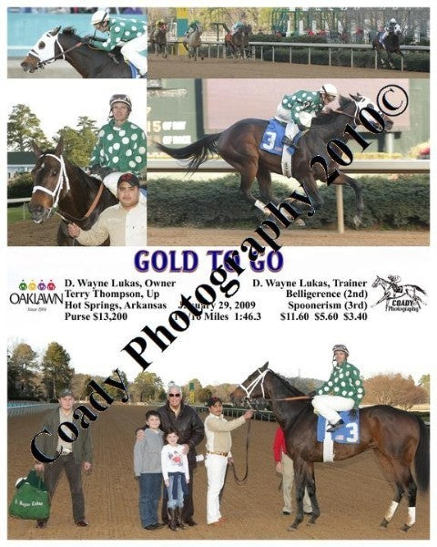 GOLD TO GO  -    -  1 29 2009