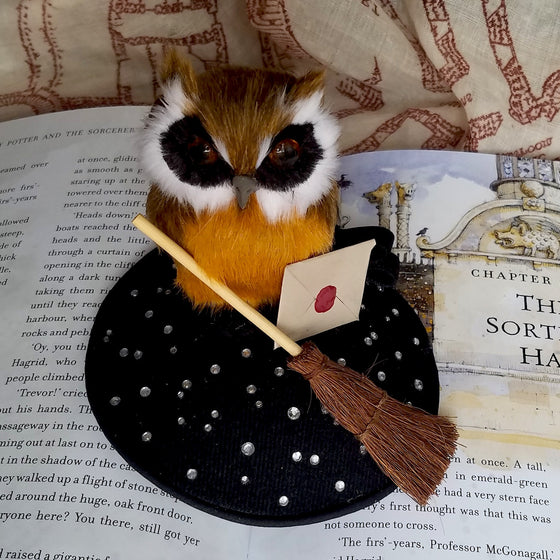 Owl fascinator hat with broom and hogwarts accetance letter. Harry Potter First Year Hat.