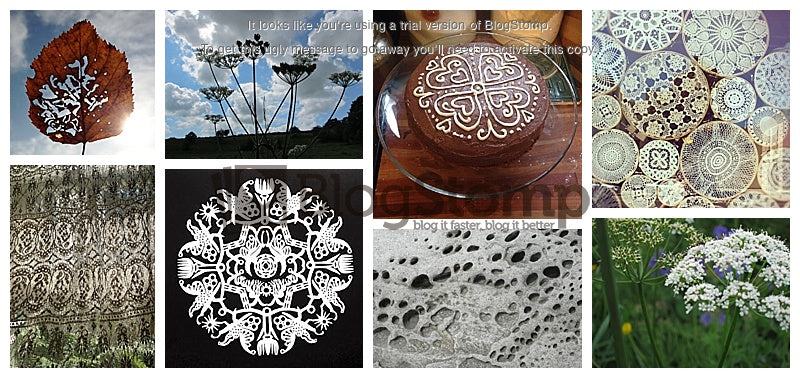 Lacy Inspiration