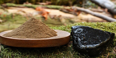 shilajit resin and powder