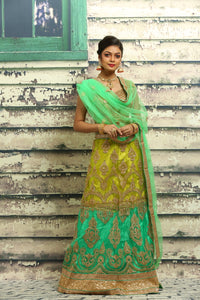 UNSTITCH BEAUTIFUL SHADED LEHENGA WITH ALL OVER ZARI HIGHLIGHT