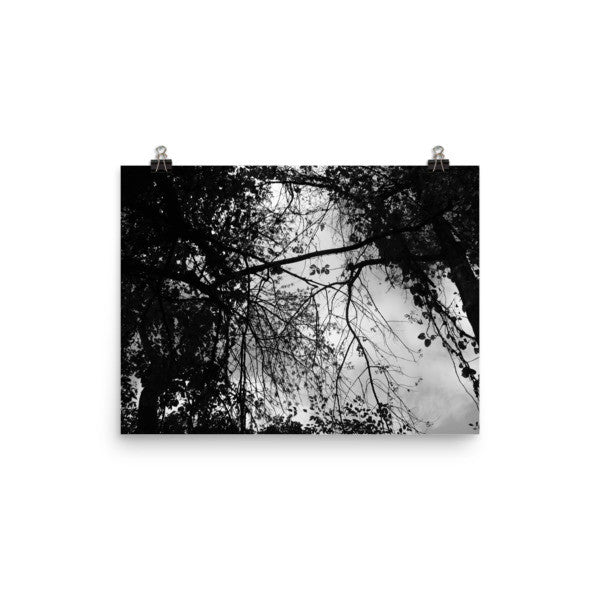 Look Up - Black & White - Art Print - AWpaints - 1