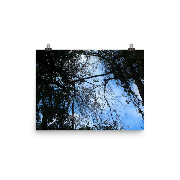 Look Up - Blue - Art Print - AWpaints - 1
