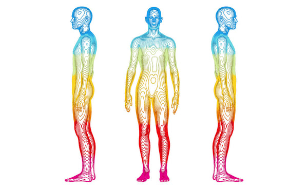 Deep Body Scan