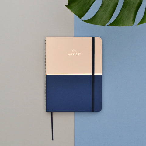 Biscuit Blue Notebook