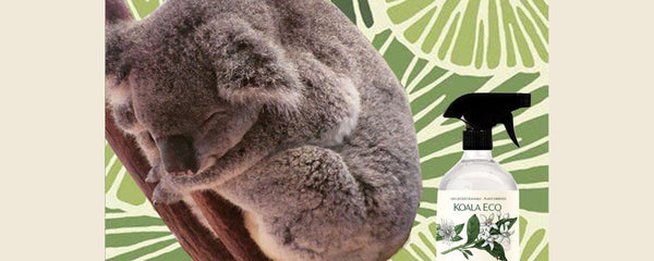KOALA ECO: made in Australia, from Australia