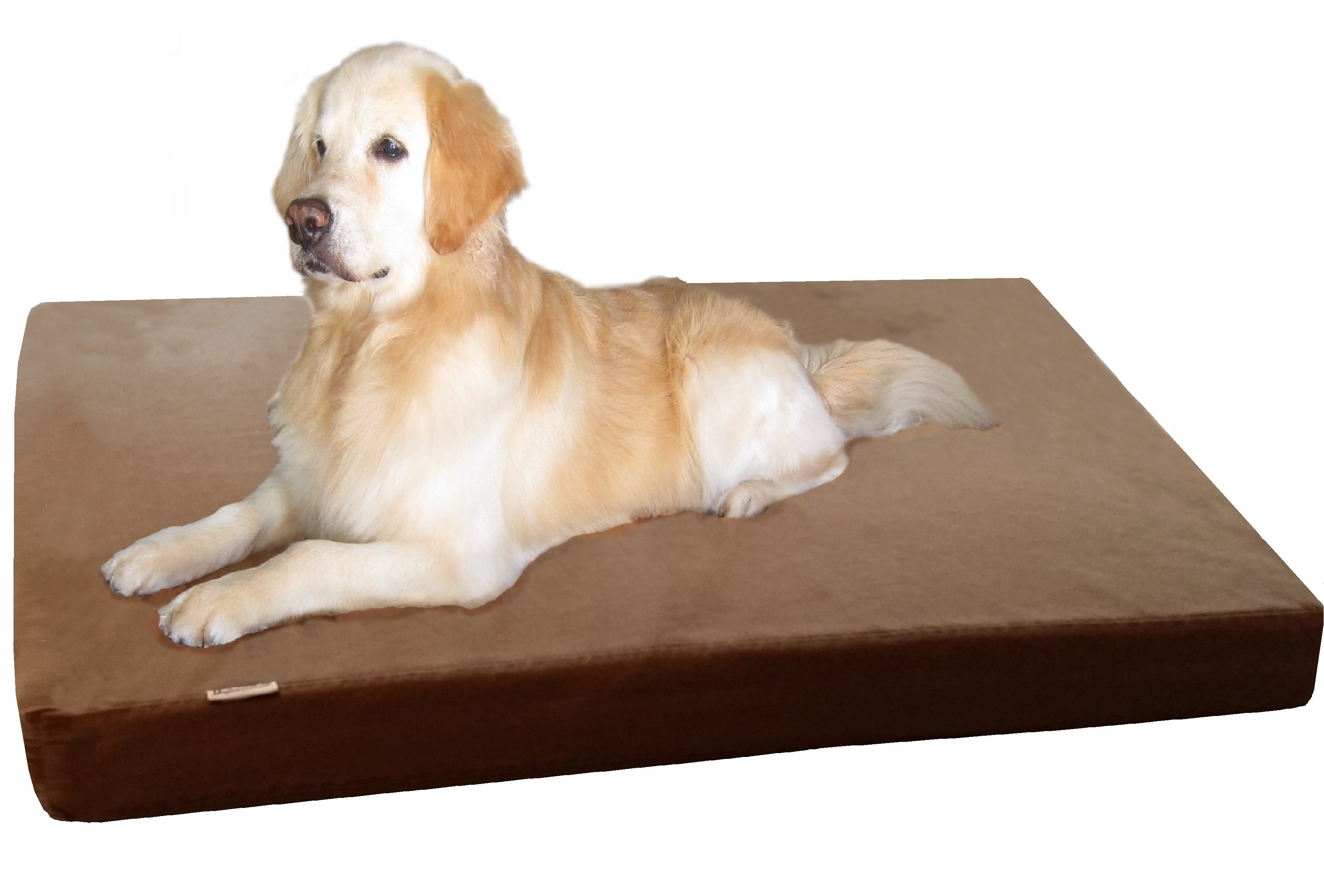 jumbo memory foam dog bed with durable waterproof cover for big