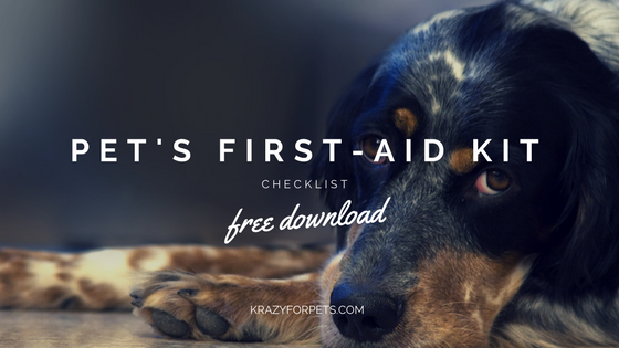 Free download pet's first-aid kit checklist.