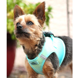 Doggy Design - Aruba Blue Ombre Harness | Krazy For Pets