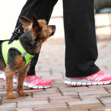 Doggy Design - Iridescent Green Top Stitch Harness | Krazy For Pets
