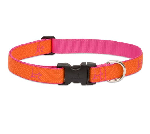 Lupine - Sunset-Orange Club Collar | Krazy For Pets