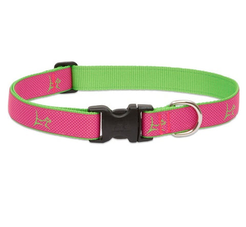 Lupine - Bermuda-Pink Club Collar | Krazy For Pets