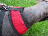 Puppia - Red Soft Harness | Krazy For Pets