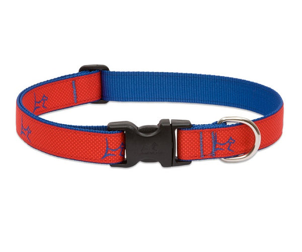 Lupine - Derby-Red Club Collar | Krazy For Pets