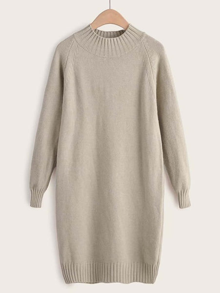 Stand Collar Raglan Sleeve Sweater Dress