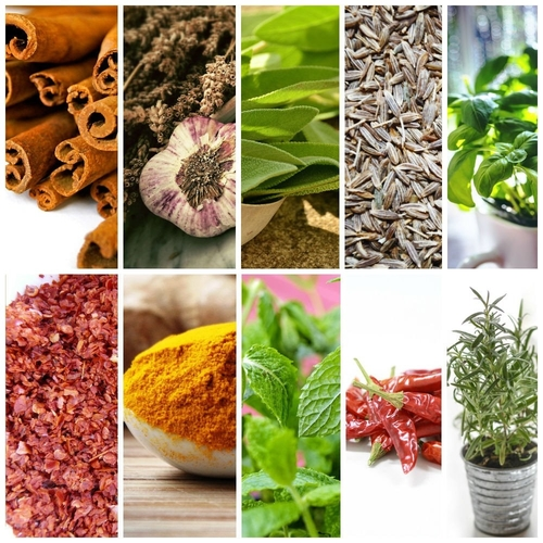 The Best Herbs and Spices for Better Family Health