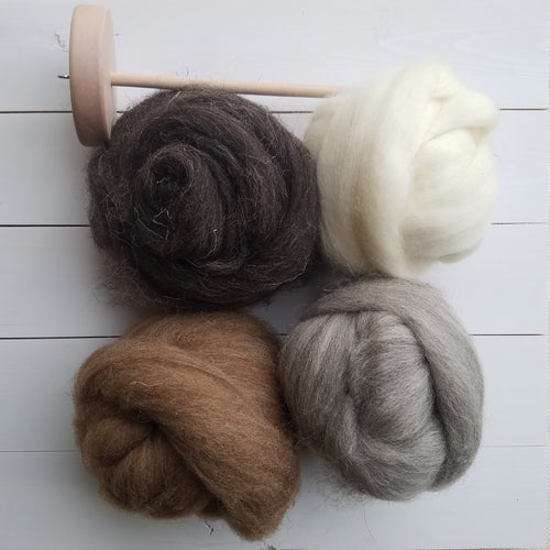 Beginning Spinning Kit