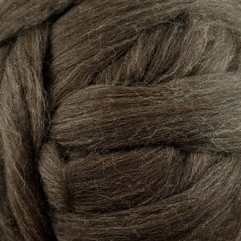 Polwarth Wool Roving