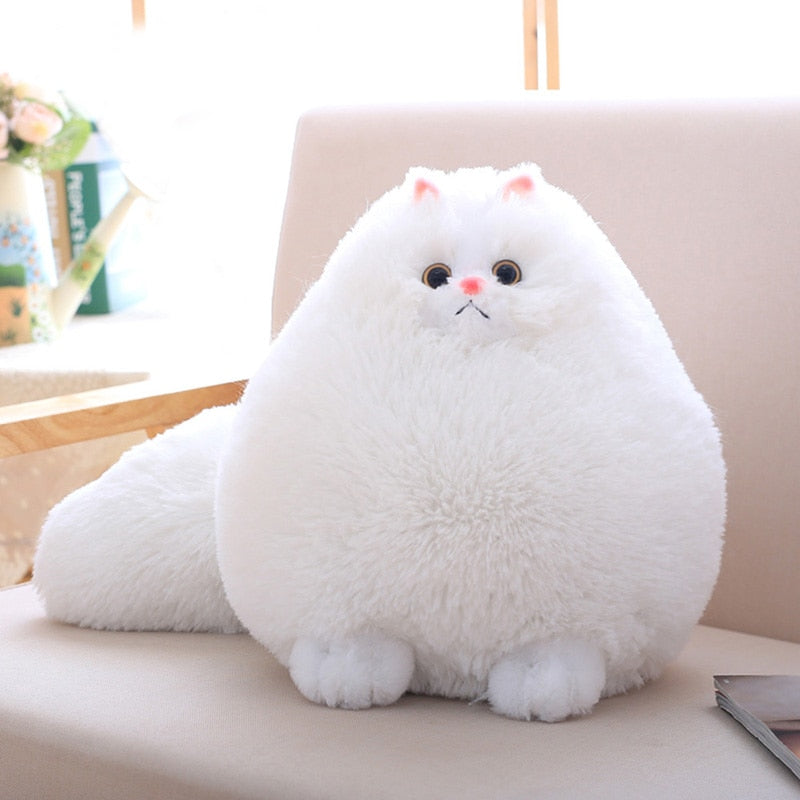 Costbuys  Fun Plush Fluffy Cats Persian Cat Toys Pembroke Pillow Soft Stuffed Animal Peluches Dolls Baby Kids Toys Gifts Brinque