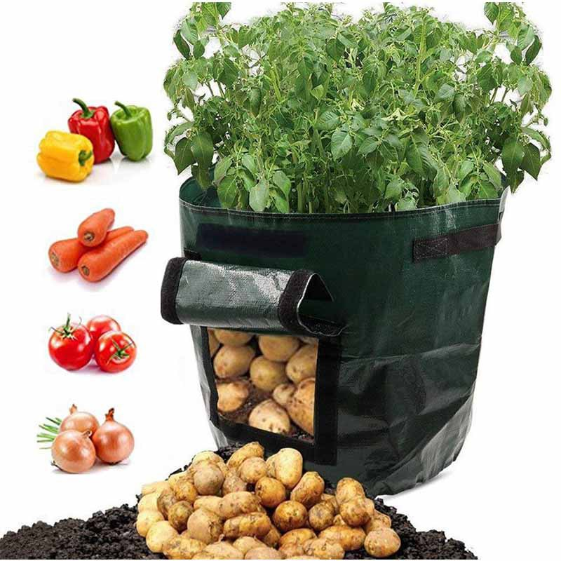 Costbuys  2 PCS Potato Grow Bags Plant Supply 10 Gallon Garden Grow Bags with Flap Handles Eco-friendly PE Pots for Potato Carro