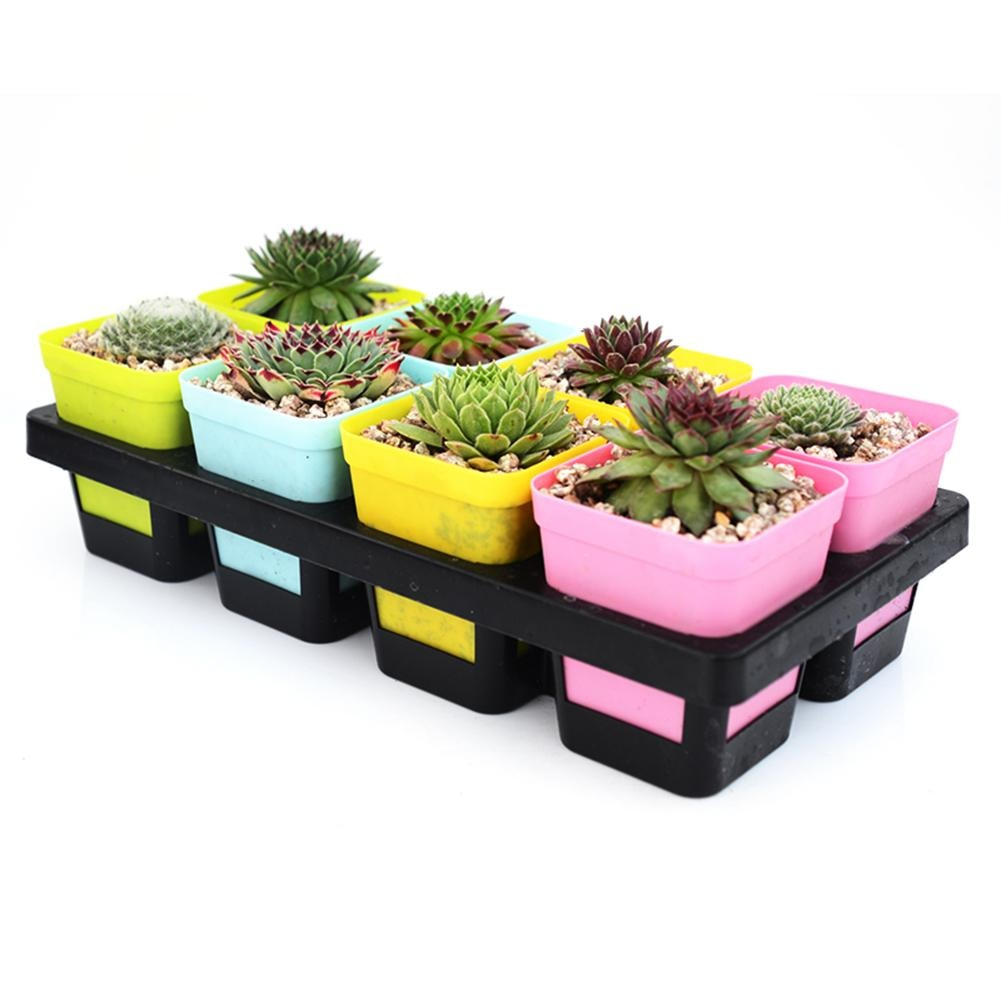 Costbuys  8 Grids Flower Pot Holder Succulent Plastic Plant Pot Tray Nursery Seedling Plant Holders Tool Garden Supplies