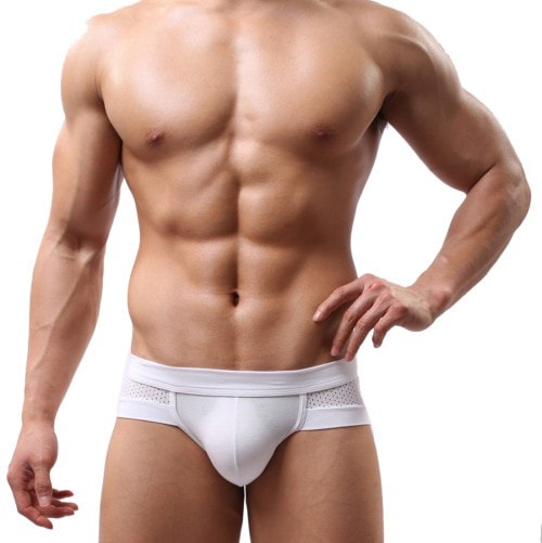Amazing Summer Mens Sexy Underwear Low Waist Cotton Briefs Underpants for Men L XL XLL
