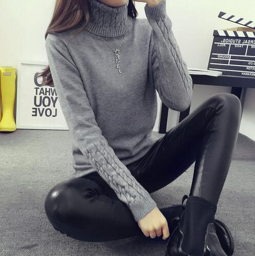Costbuys  Women Turtleneck Winter Sweater Women Long Sleeve Knitted Women Sweaters And Pullovers Female Jumper Tricot Tops - Gra