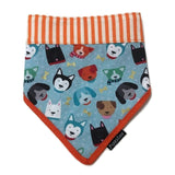 Doggy Friends Bandana