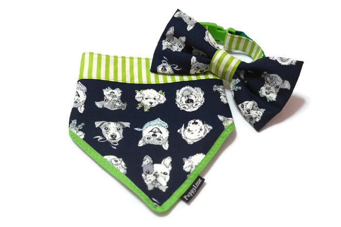 United Dogs Bowtie Blue