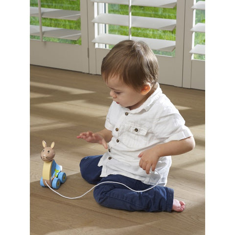 Pull Along Peter Rabbit Toy - Hetty's Baby Boutique