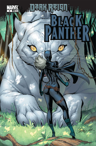 Black Panther (Vol.4 2009) #4