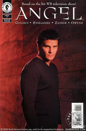 Angel Vol.1 #11 - Photo Cover